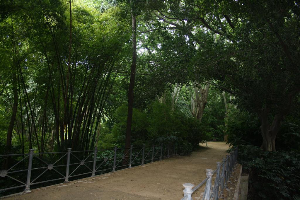 снимка на ботаническата градина в Малага